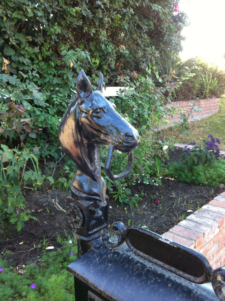 Horse statue on mailbox on Buckskin Lane, RHE