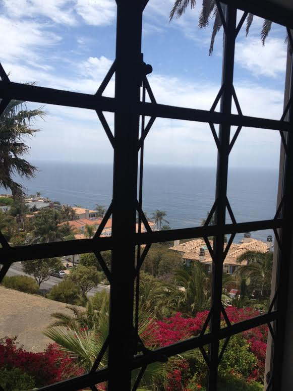 View from RPV luxury home