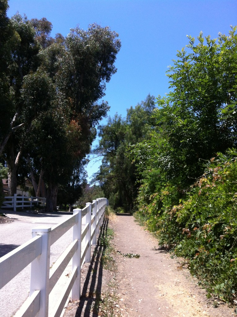 Palos Verdes has miles and miles of riding trails.