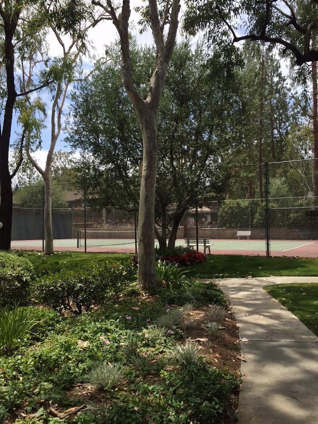 Gardens Tennis Court