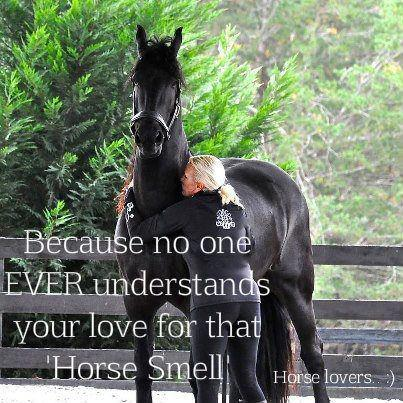 Horse Smell
