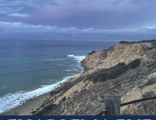 Palos Verdes Luxury Homes Snapshot May 2020