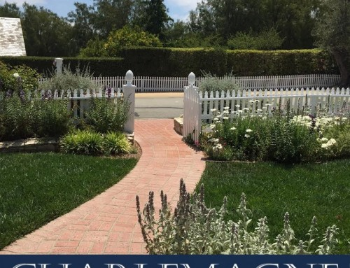 Rolling Hills Real Estate Snapshot February 2020