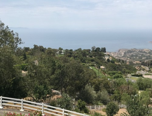Rolling Hills CA Real Estate Snapshot July 2018