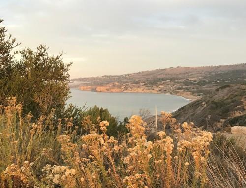 Palos Verdes Single Family Homes Snapshot November 2018