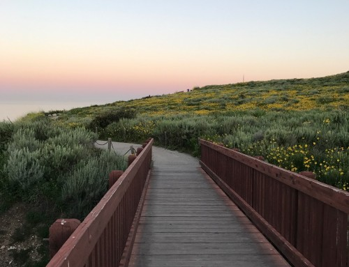 Rancho Palos Verdes Real Estate Snapshot April 2019