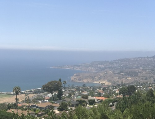 Rancho Palos Verdes Real Estate Snapshot August 2019