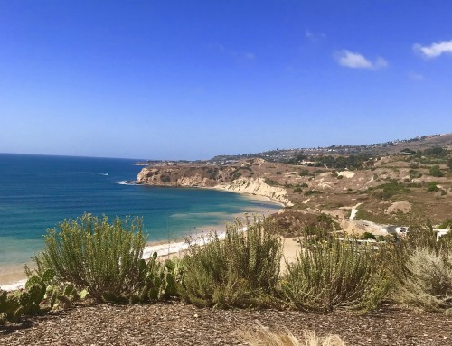 Palos Verdes Real Estate Snapshot October 2019