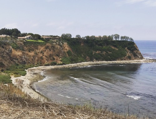 Palos Verdes Estates Real Estate Snapshot November 2019