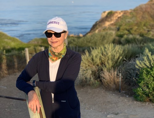 Palos Verdes Estates Snapshot May 2020